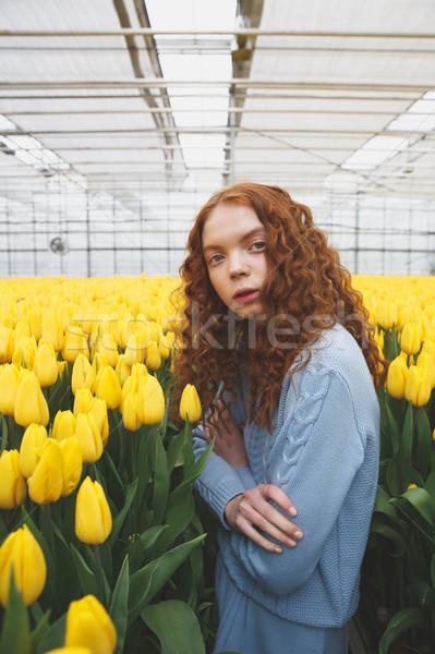 Csodálatos hölgy áll göndör haj citromsárga tulipánok Stock fotó © deandrobot