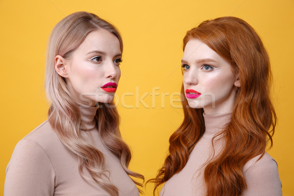Beautiful two ladies with bright makeup lips Stock photo © deandrobot