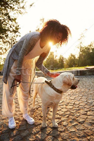 Happy lady hugging her white friendly dog while walking in park Stock photo © deandrobot