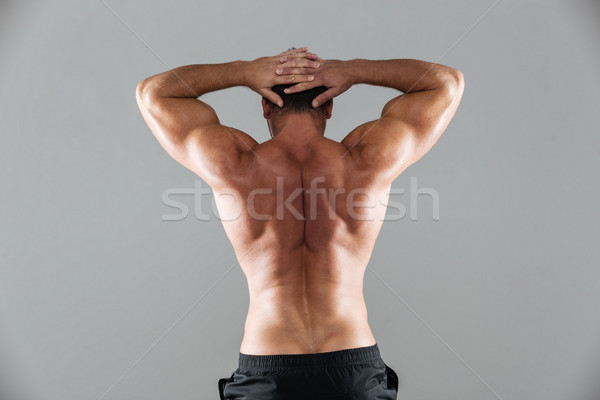 Hátulnézet portré izmos póló nélkül férfi testépítő Stock fotó © deandrobot