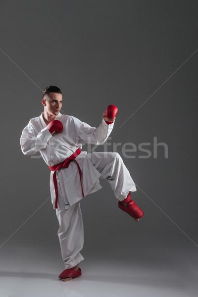 Sportoló gyakorlat karate izolált szürke kép Stock fotó © deandrobot