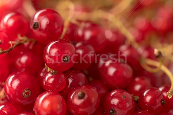 Piros ribiszke bogyók közelkép makró kép Stock fotó © deandrobot