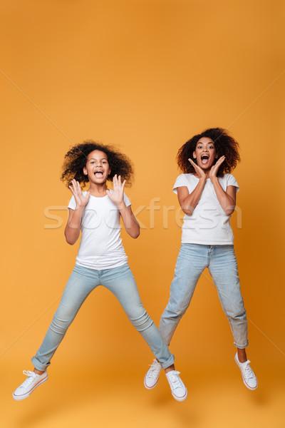 Portrait deux afro soeurs Photo stock © deandrobot