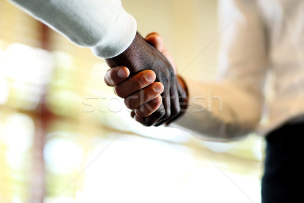 Close-up of businessmen shaking hands, Caucasian and African-American Stock photo © deandrobot