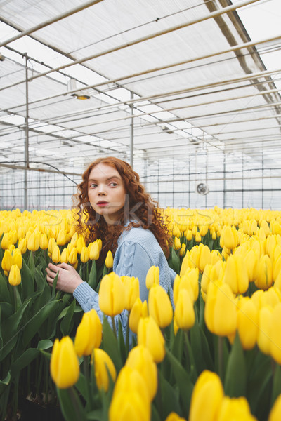 Shot of young girl standing in large greenhouse Stock photo © deandrobot