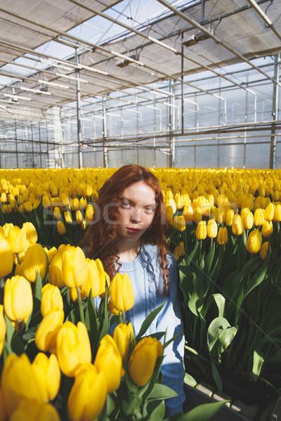 Portrait of girl in blossom Stock photo © deandrobot