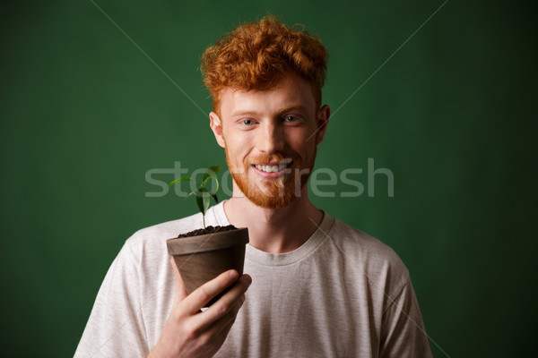 Photo of handsome redhead bearded young man, holding potted plan Stock photo © deandrobot