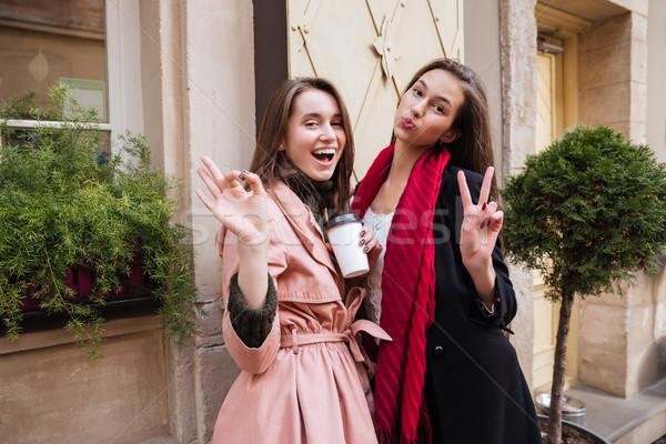 Stock photo: Sisters in coats looking at camera