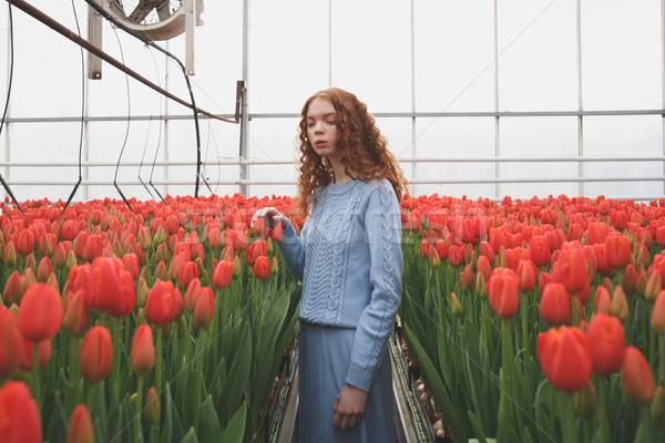 Girl looking down in orangery Stock photo © deandrobot