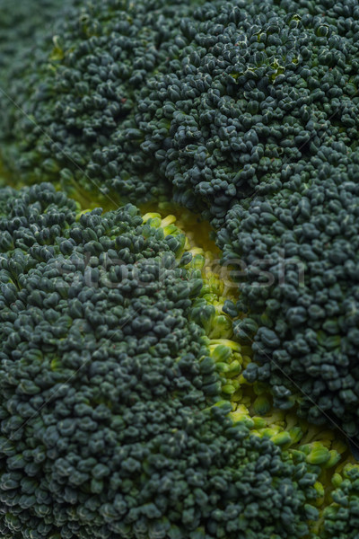 Közelkép friss brokkoli izolált fehér étel Stock fotó © deandrobot