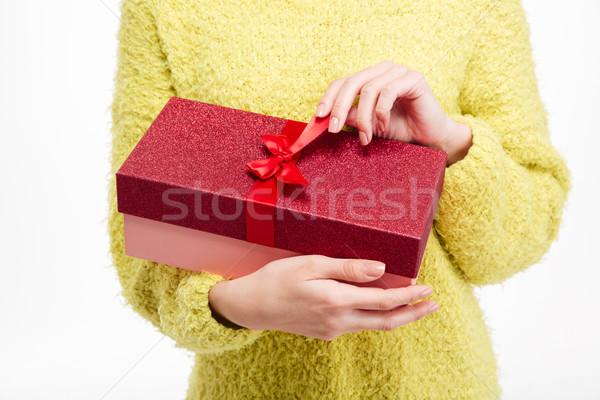 Vrouwelijke handen geschenkdoos portret Stockfoto © deandrobot