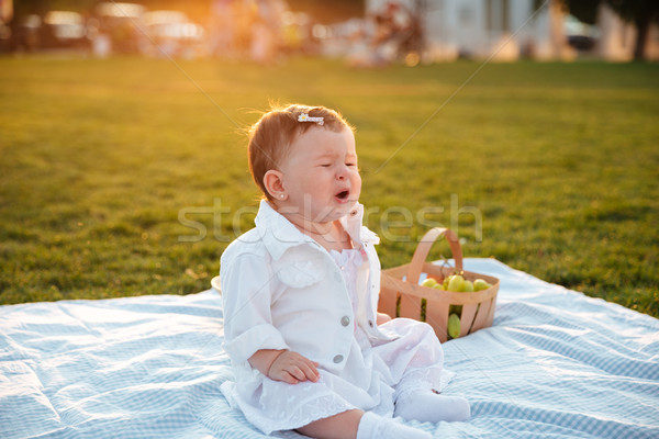 Cute little baby crying alone in park Stock photo © deandrobot