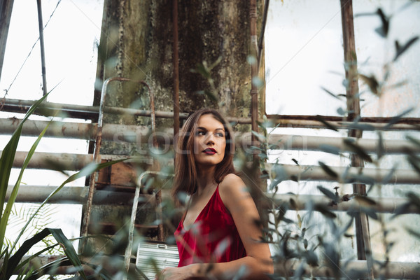 View from below of brunette woman in greenhouse Stock photo © deandrobot