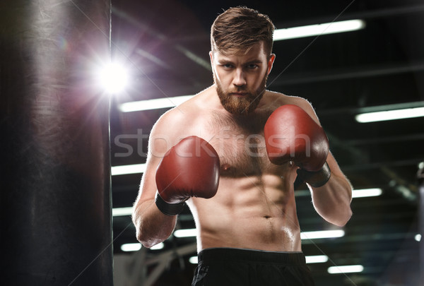 Concentrated young strong sports man boxer Stock photo © deandrobot
