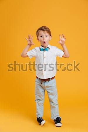 Funny little children brothers standing isolated Stock photo © deandrobot