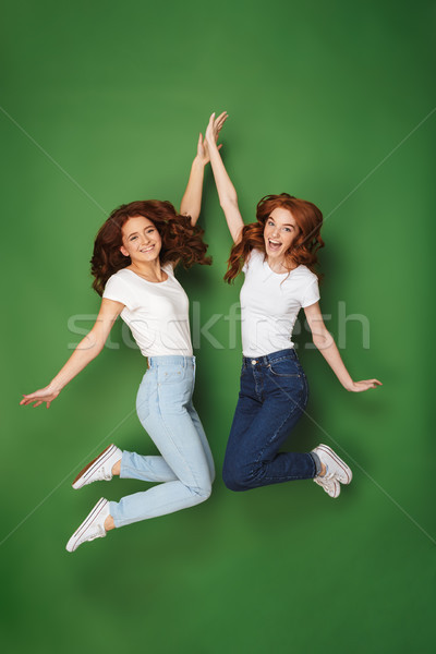 Full length portrait of two excited young redhead girls Stock photo © deandrobot