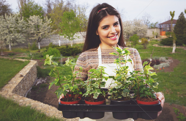 Cheerful cute woman standing with flowers in pots at garden Stock photo © deandrobot