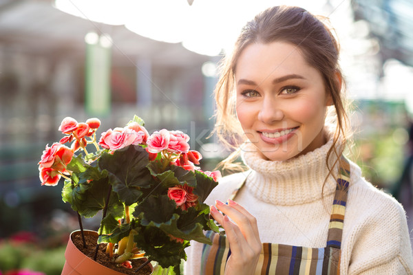 Cheerful beautiful woman florist holding flowering begonia  Stock photo © deandrobot