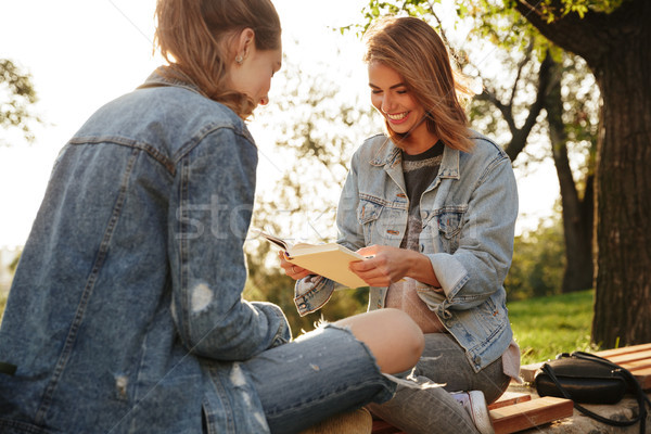 Two happy young woman in casual jeans wear reading books in sunn Stock photo © deandrobot