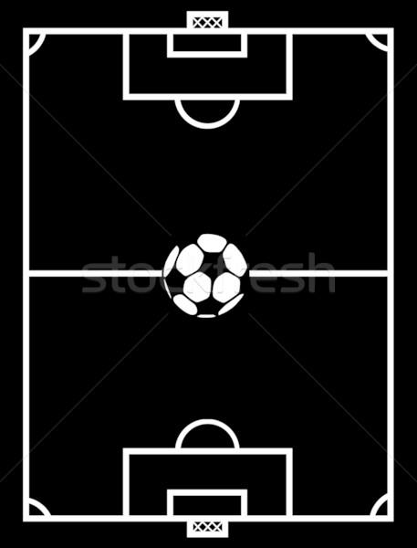 Futballpálya feketefehér mező labda stadion profi Stock fotó © DeCe