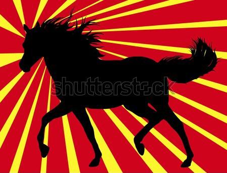 ストックフォト: を実行して · 馬 · 日光 · 自然 · 髪 · 背景