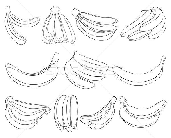 Szett különböző banán izolált fehér gyümölcs Stock fotó © DeCe