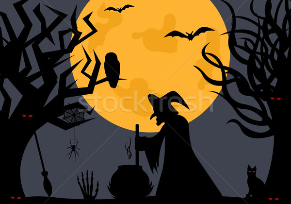 Illustration of a witch Stock photo © DeCe