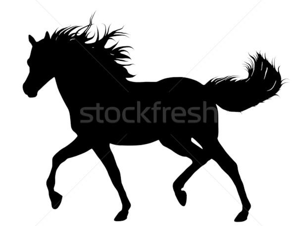 Fut ló fekete sziluett izolált fehér Stock fotó © DeCe