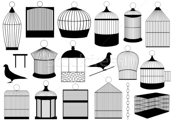 Vogel isoliert weiß schwarz Kette Draht Stock foto © DeCe