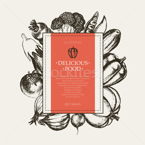 Vegetables - hand drawn square banner. Stock photo © Decorwithme