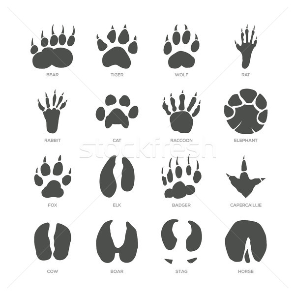 Animal trails - modern isolated vector set Stock photo © Decorwithme