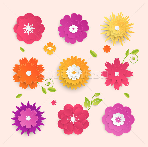 Paper cut flowers - set of modern vector colorful objects Stock photo © Decorwithme