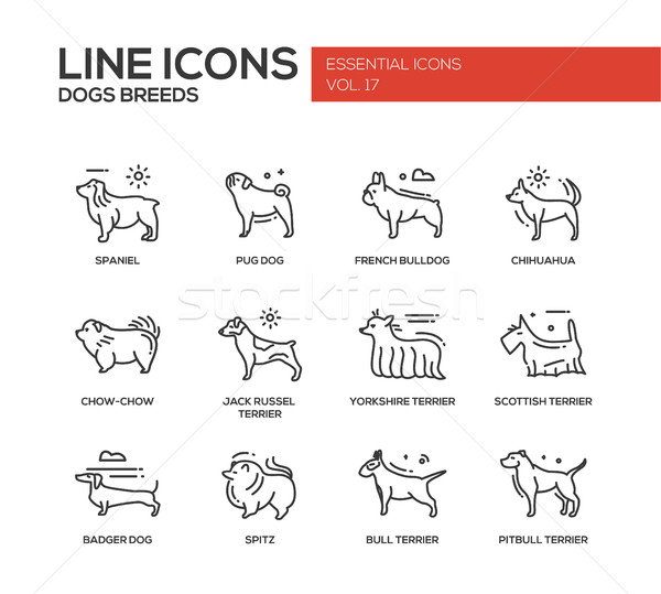 Dog breeds - line design icons set Stock photo © Decorwithme