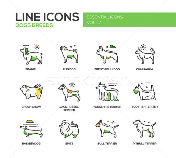 Stock photo: Dog breeds - line design icons set