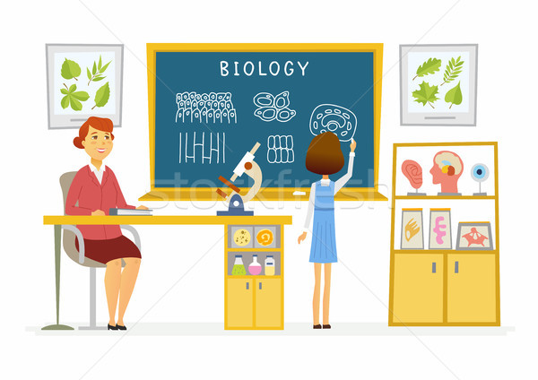 Biology lesson at school - modern cartoon people characters illustration Stock photo © Decorwithme