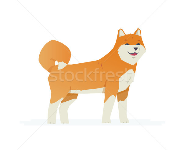 Cute akita inu - modern vector cartoon characters illustration Stock photo © Decorwithme
