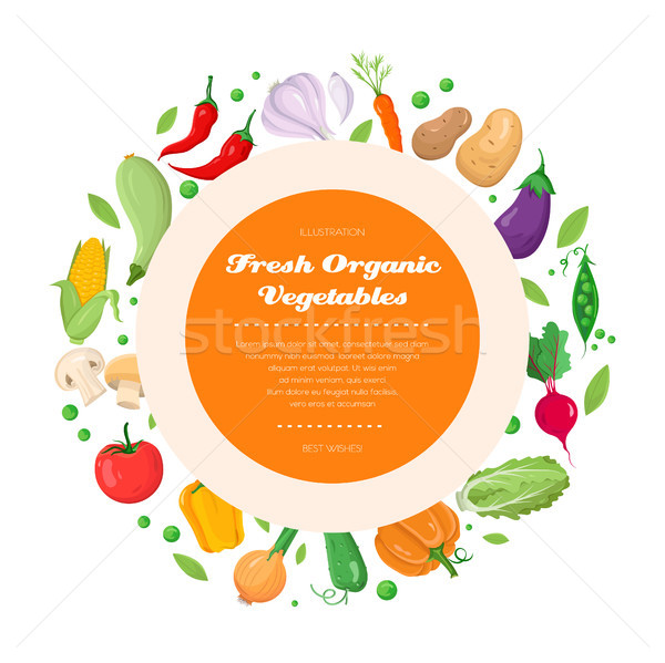 Fresh organic vegetables - modern colorful vector illustration Stock photo © Decorwithme