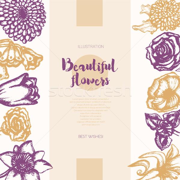 Bella fiori colore banner Foto d'archivio © Decorwithme