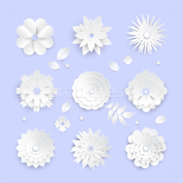 White paper cut flowers - set of modern vector colorful objects Stock photo © Decorwithme