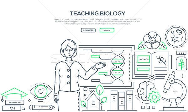 Enseignement biologie coloré ligne design style Photo stock © Decorwithme
