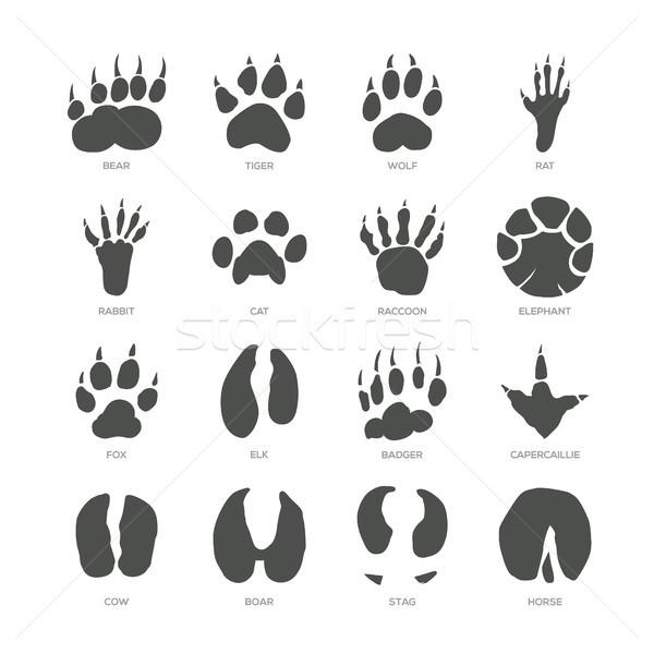 животного современных изолированный вектора набор белый Сток-фото © Decorwithme