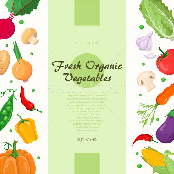 Stock photo: Fresh organic vegetables - modern colorful vector illustration