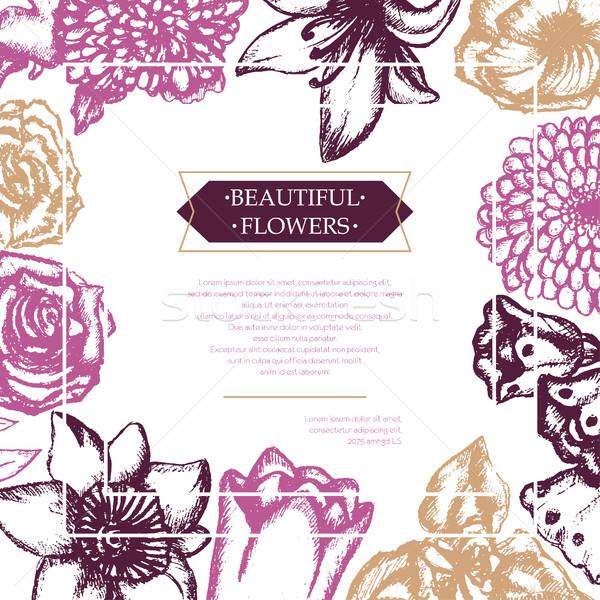 Gyönyörű virágok szín kézzel rajzolt összetett szórólap Stock fotó © Decorwithme