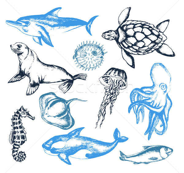 Mer créatures illustration vecteur vintage couleur Photo stock © Decorwithme