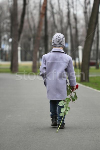 мало мальчика ходьбе парка романтические закрывается Сток-фото © DedMorozz