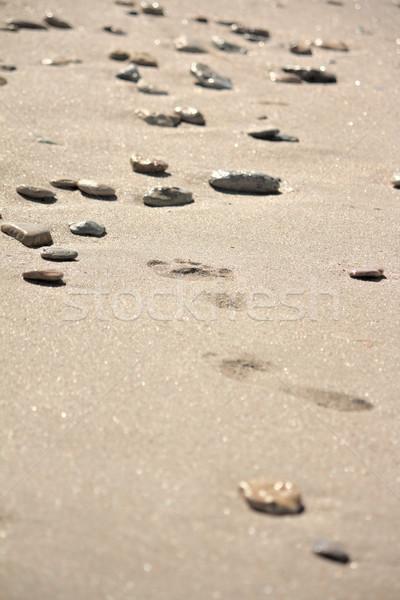 следов пляж камней каменные ходьбы Сток-фото © DedMorozz