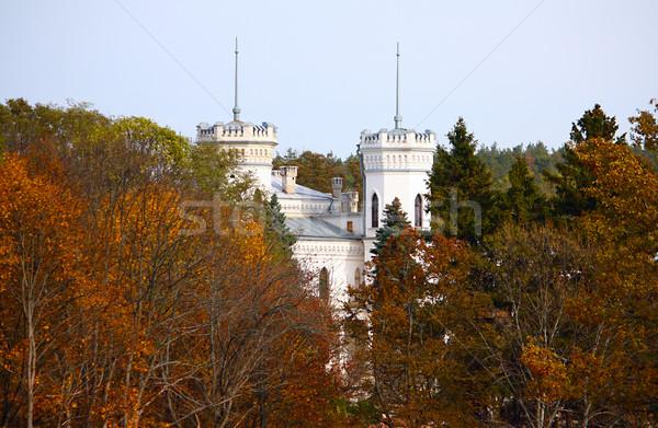 белый замок осень лес небе синий Сток-фото © DedMorozz