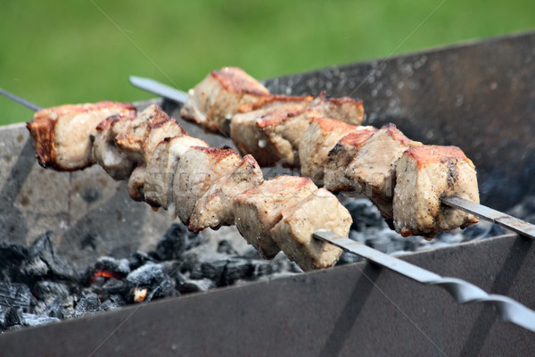 Meat prepared at the barbecue Stock photo © DedMorozz