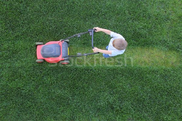 мало мальчика трава газона природы Сток-фото © DedMorozz