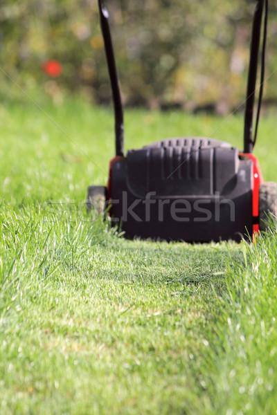 Lawn-mower cuts a grass Stock photo © DedMorozz